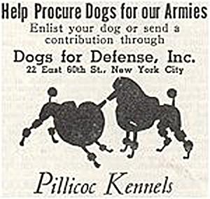Programme militaire de recrutement de chien